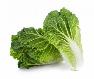 fresh-chinese-cabbage-white-background_29402-809